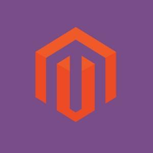 Enterprise E-Commerce Platform Magento