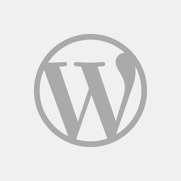WordPress - CMS und Blog System für kleine und große Webseiten