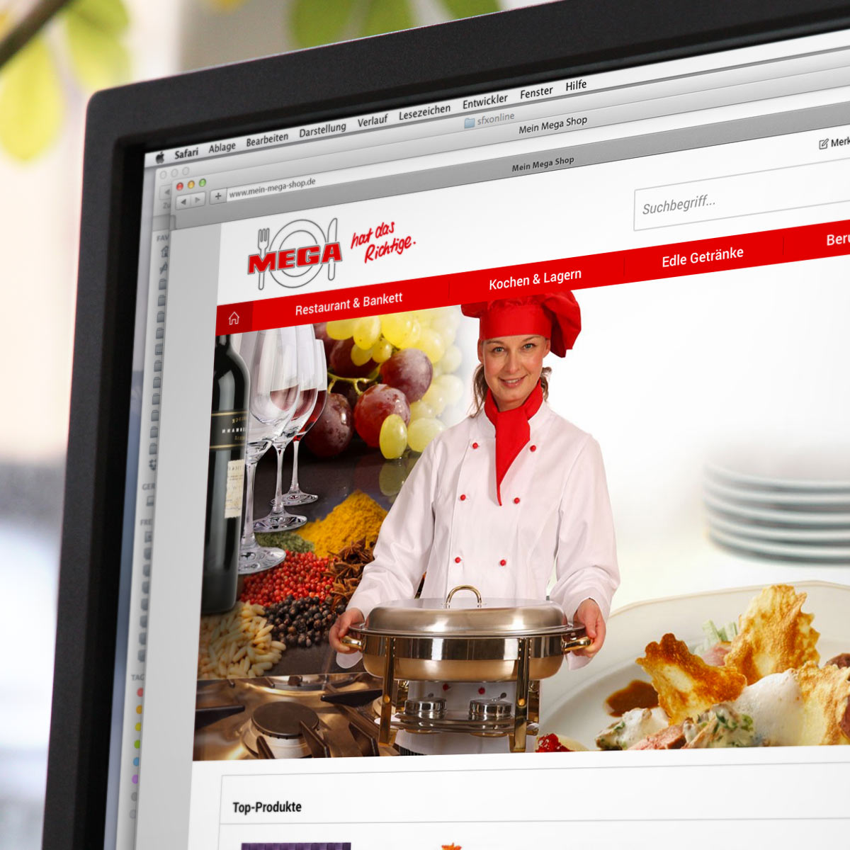 Shopware Referenz mein-mega-shop.de